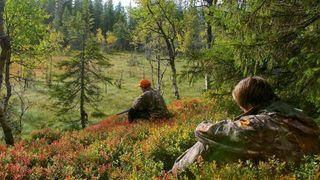 To menn i skogen, venter på vilt.
