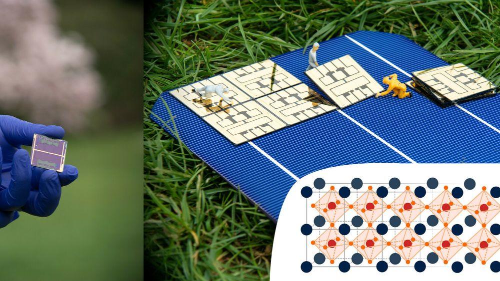Perovskitt: Her sitter halidene som hjørner i de oransje oktaedrene rundt det røde bly-ionet. Størrelsen på oktaedrene er med på å bestemme ved hvilke bølgelengder materialet absorberer lys, og kan justeres ved å endre sammensetningen av halider.