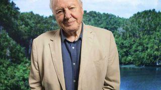 David Attenborough sier til Faktisk.no via sin advokat at han «på ingen måte kjenner seg igjen i formuleringene» og at han «aldri ville ha sagt noe slikt».