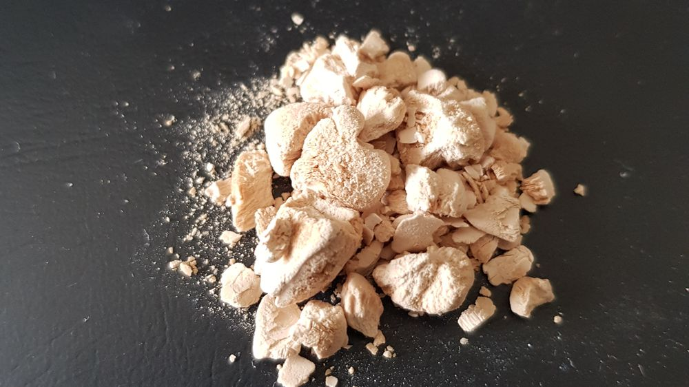 Dette proteinpulveret ble produsert under forsøkene ved Norce.