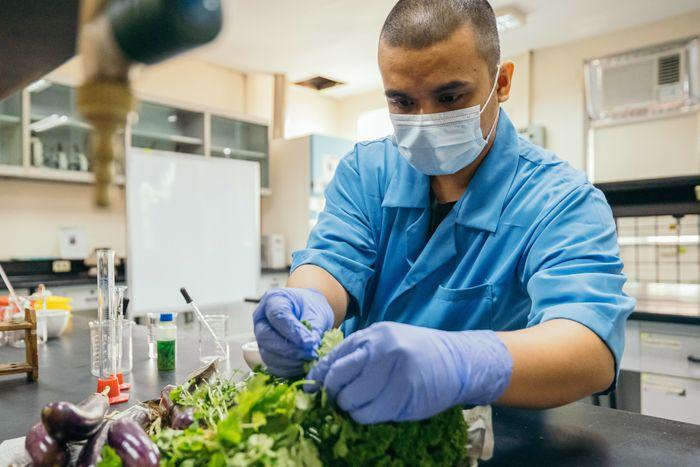 Carvey Ehren Maigue gjør frukt- og grønnsaksavfall til et selvlysende materiale som kan konvertere UV-lys.