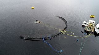 Dette kan åpne for mer havbruk i nye områder