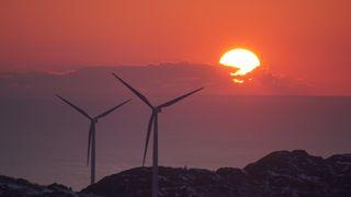 Ingen ny norsk vindkraft på ti år: NVE-sjefen spår full stopp
