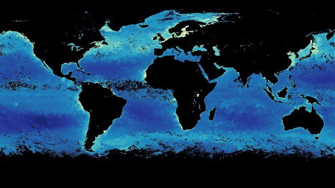 Kart med mengden klorofyll i verdens hav.