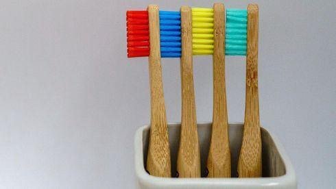 Fire tannbørster med rød blå gul grønn farge på børstehodet.