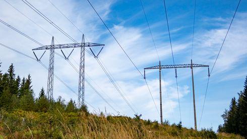 De rødgrønne vil senke strømregningen – uenige om hvordan