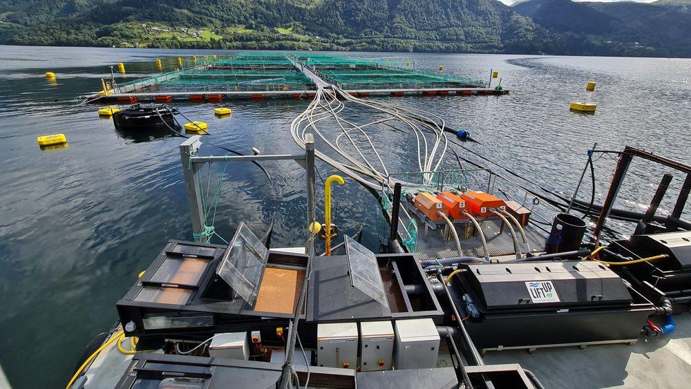 Slamoppsamlingssystemet til Liftup blir nå en del av Framo. Det oransje slammet samles i beholdere på fôrflåten.