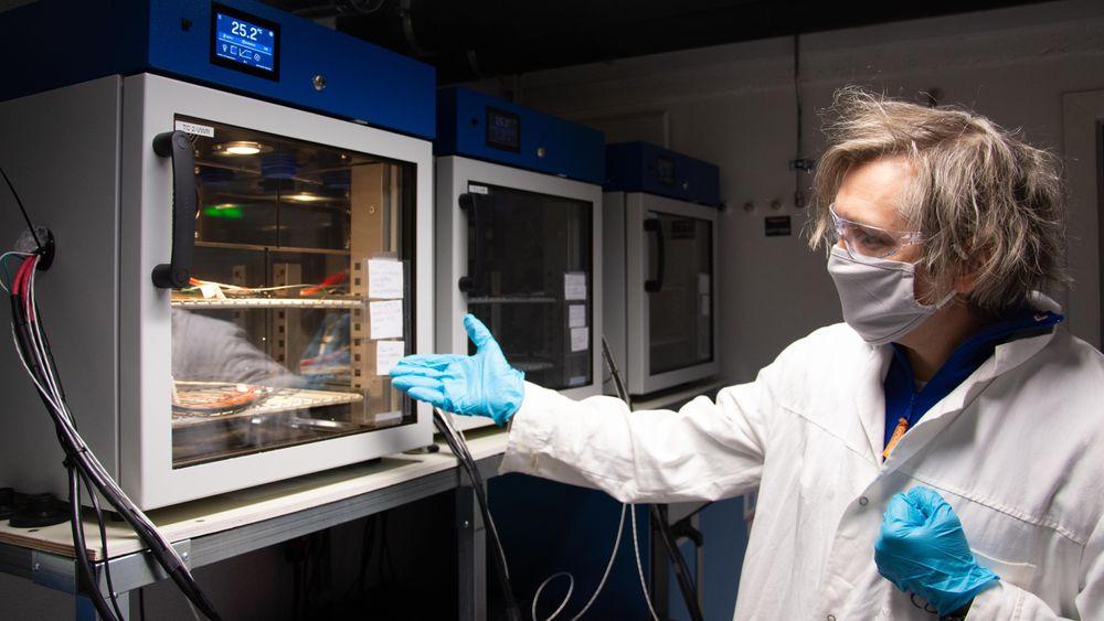 Professor Odne Stokke Burheim leder NTNUs batterilab, og er i ferd med å sette sammen universitetets første utdanningstilbud for ingeniører som vil omskolere seg til batteriindustrien.