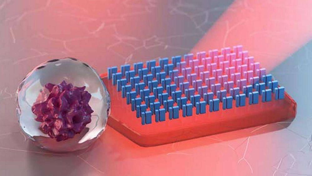 Forskningsleder Mikael Käll tror mikrofarkostene for eksempel kan brukes innen mikrofluidikk eller bioteknologi.