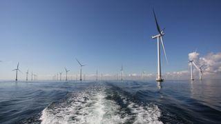 Enorm interesse for havvind i Sverige – nå kan de også få et offshore kraftnett