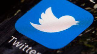 Ikonet til Twitter-appen på skjerm. Foto.