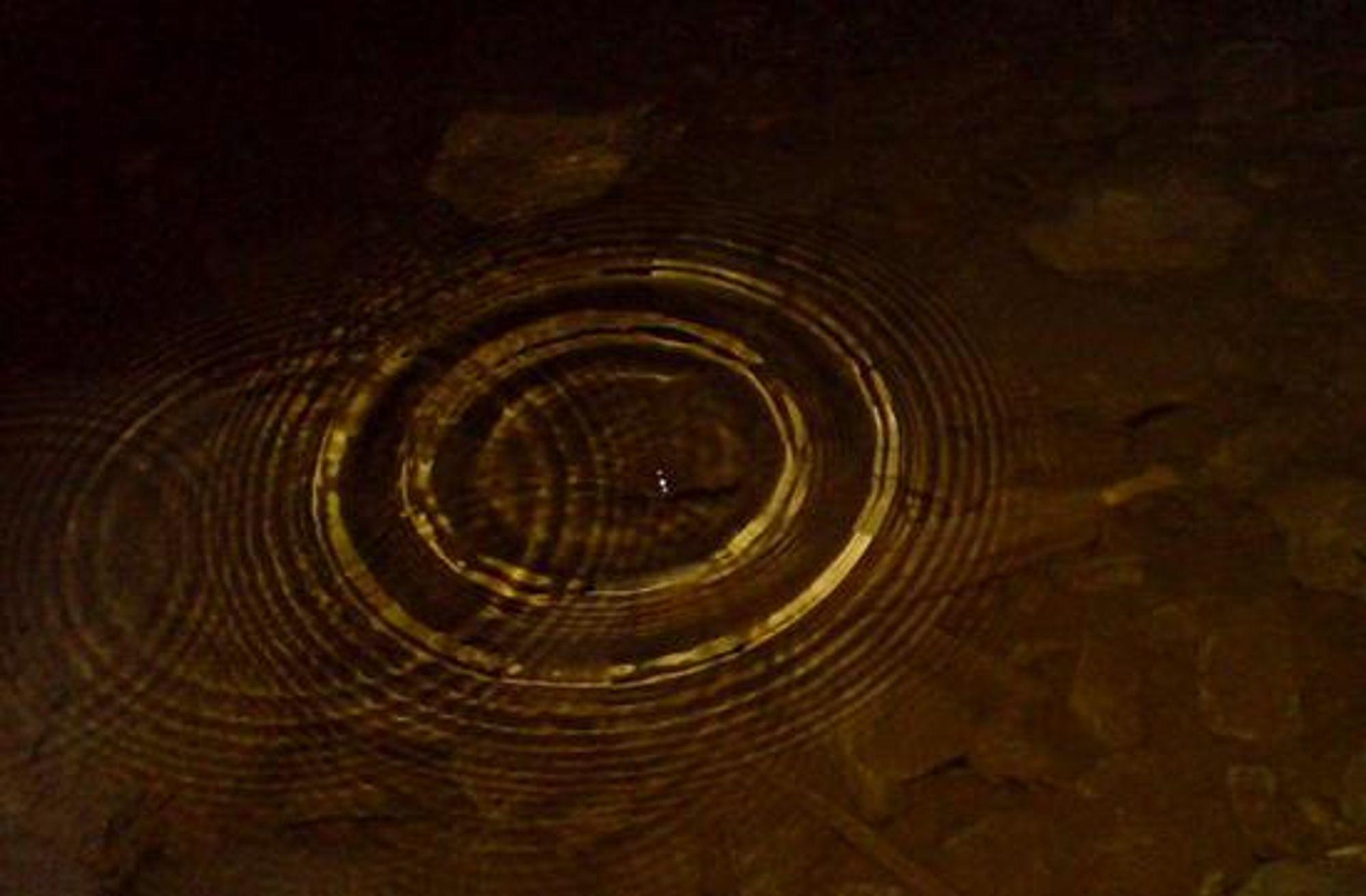 #6) Ringer i vannet