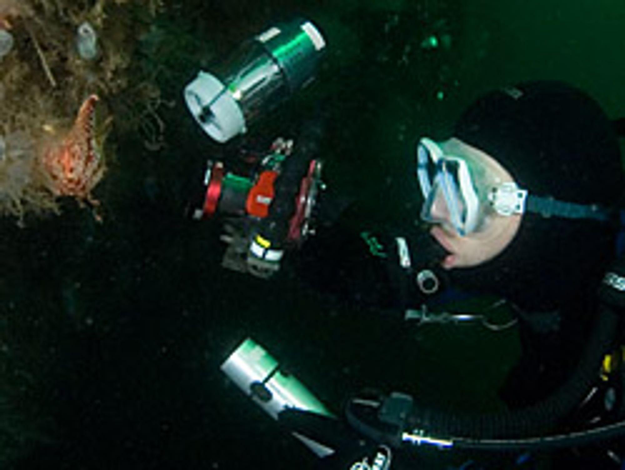 Her er David Øhre igang med kompaktkamera med ekstern blits, samt en lykt for å hjelpe autofokusen.
