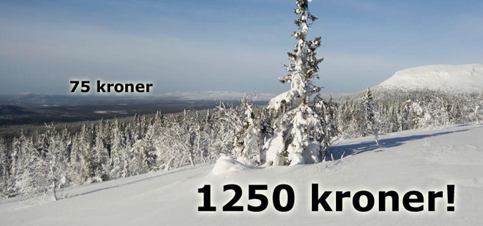 Krysser du svenskegrensen med Telenor, kan regningen hoppe med 1125 kroner for 50 MB.