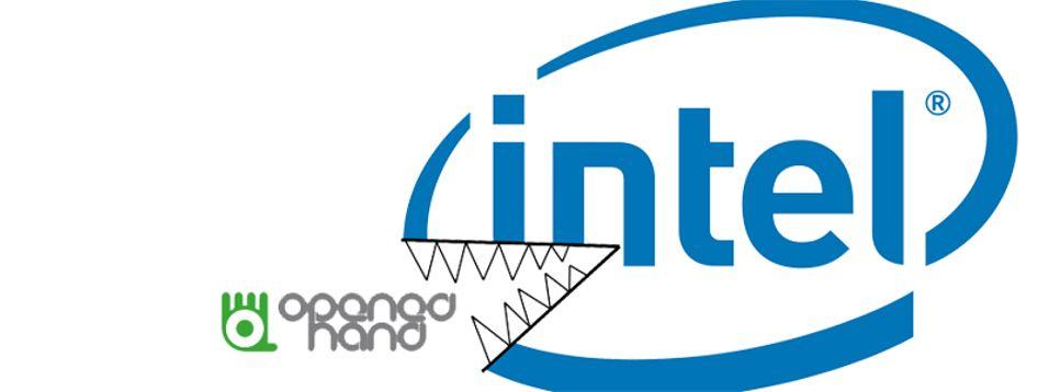 Intel kjøper mobil-Linux