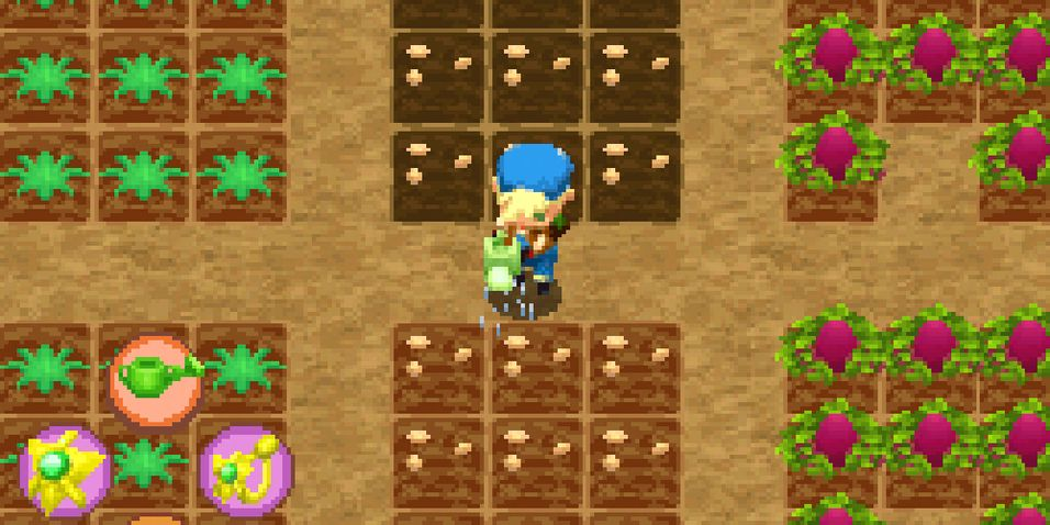 ANMELDELSE: Harvest Moon: Island of Happiness