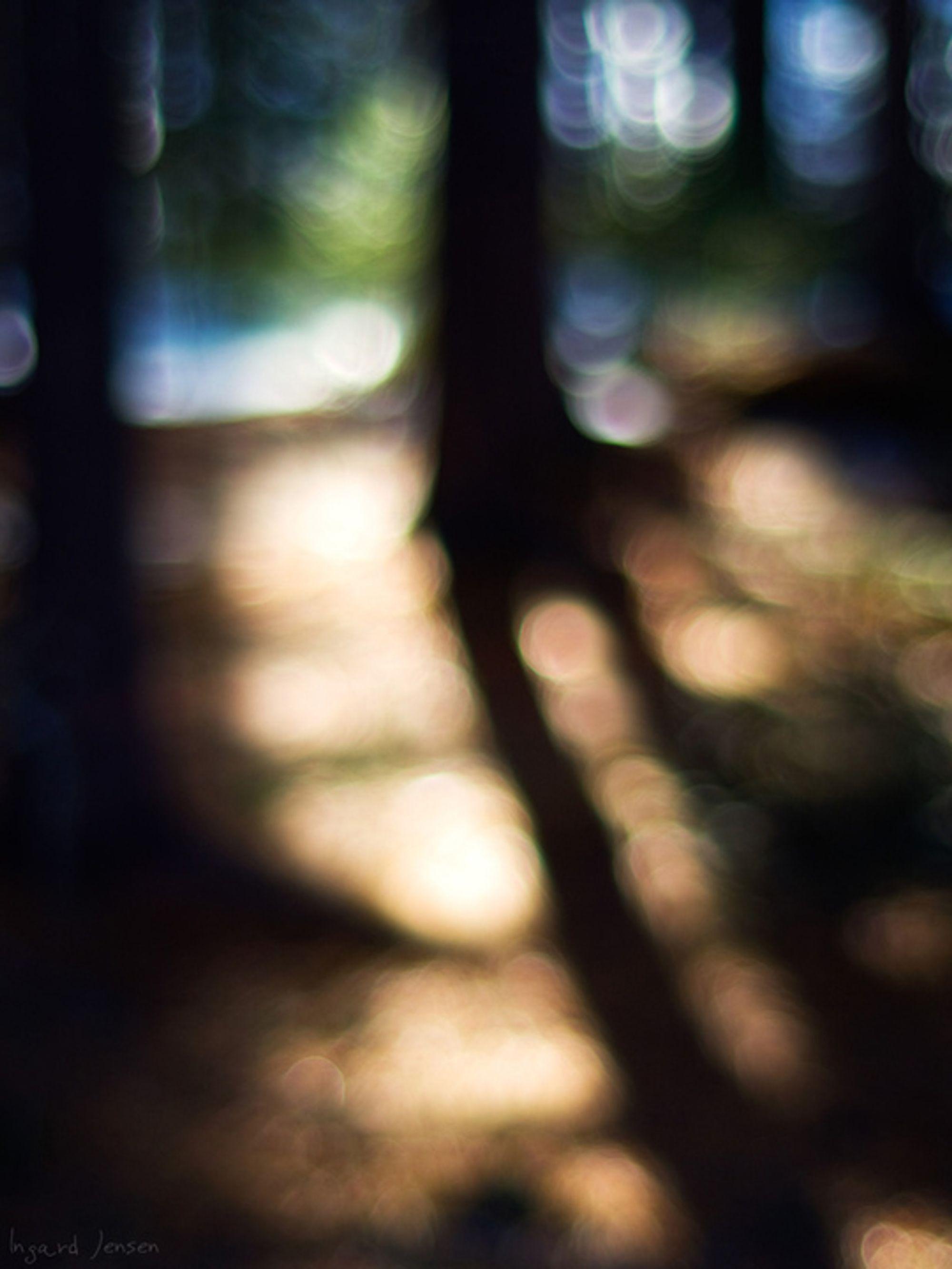 Foto: Ingardj