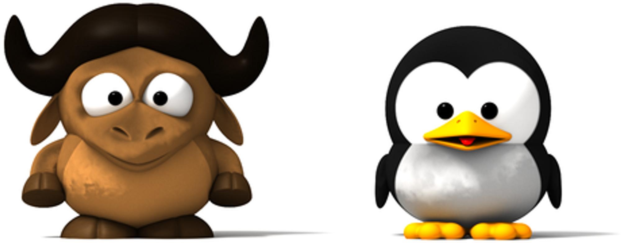 GNU/Linux er den korrekte betegnelsen...