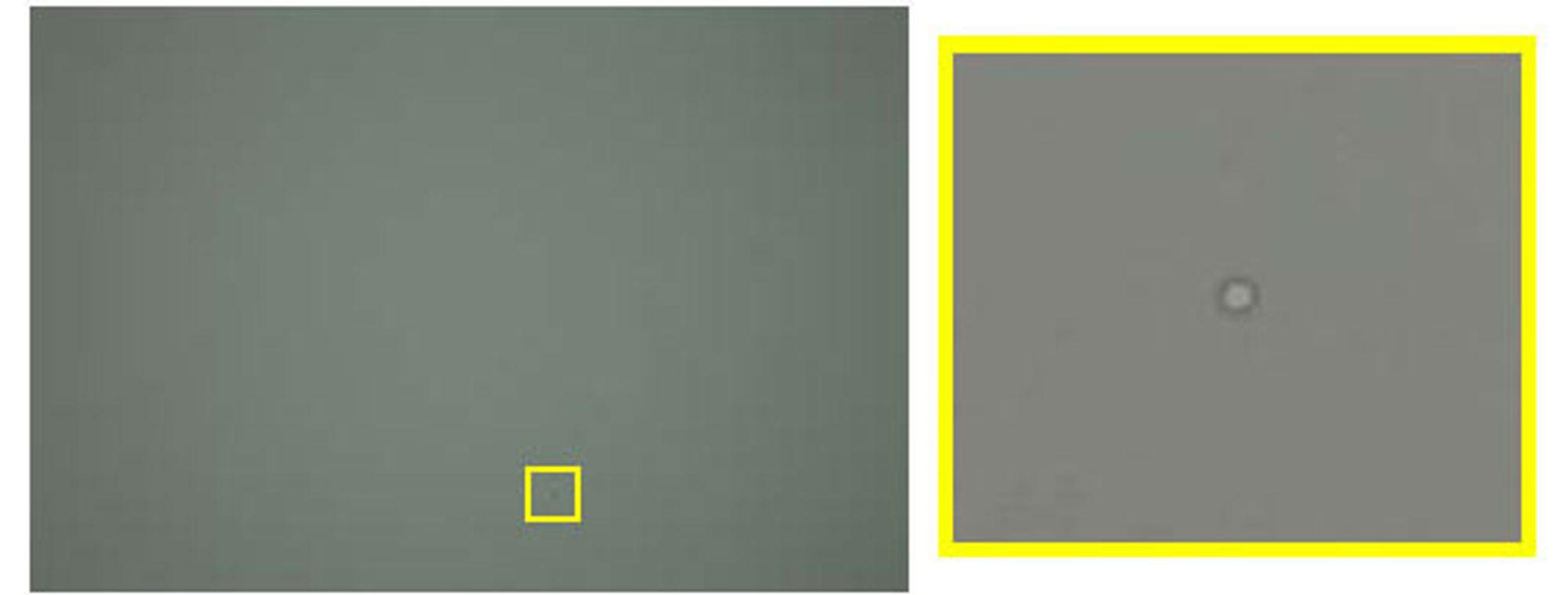 Ringformet oljeflekk er lett synlig på det forstørrete bildet til høyre.