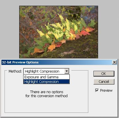 32 bit preview options