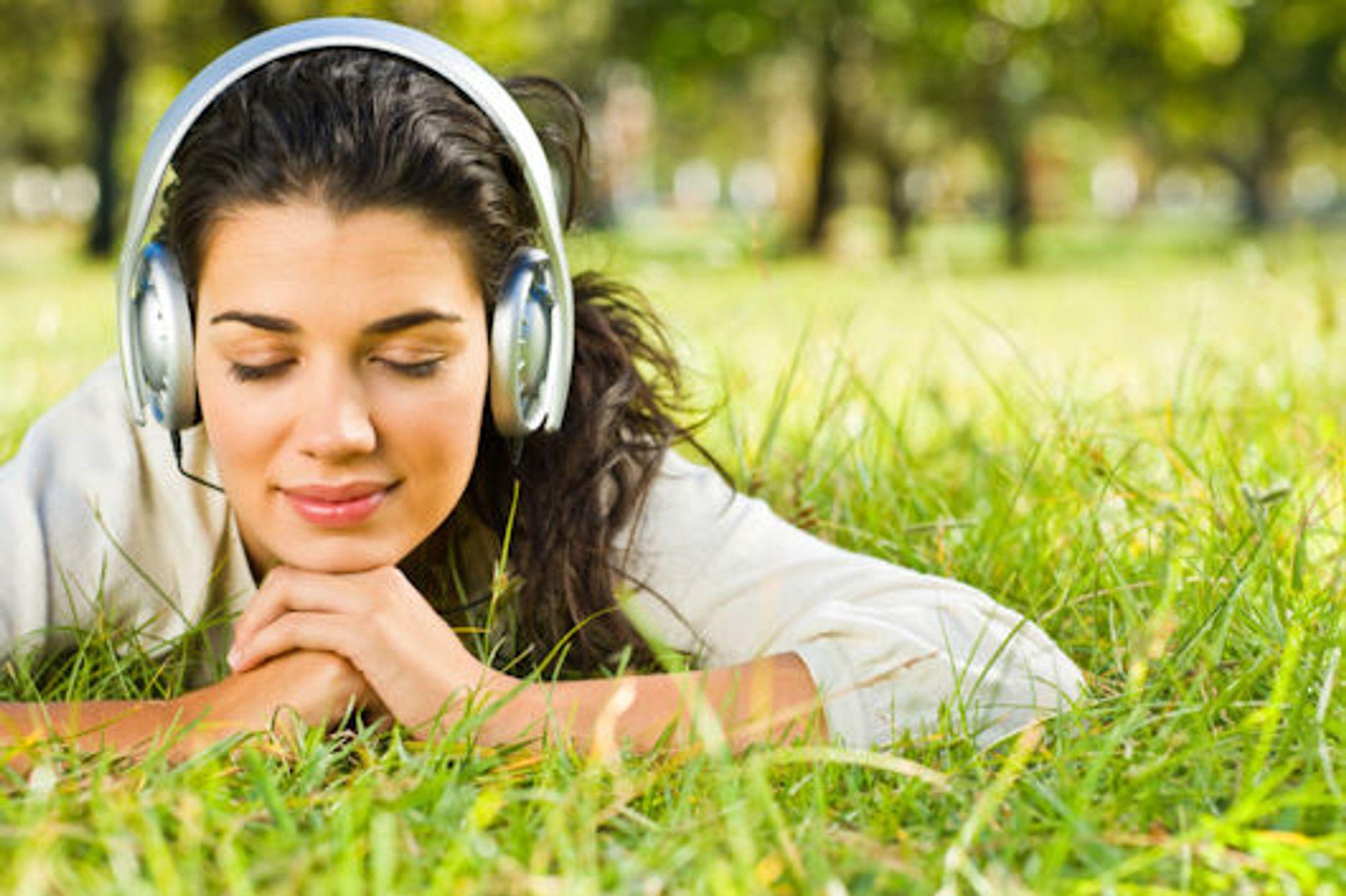laste ned musikk fra spotify dildo