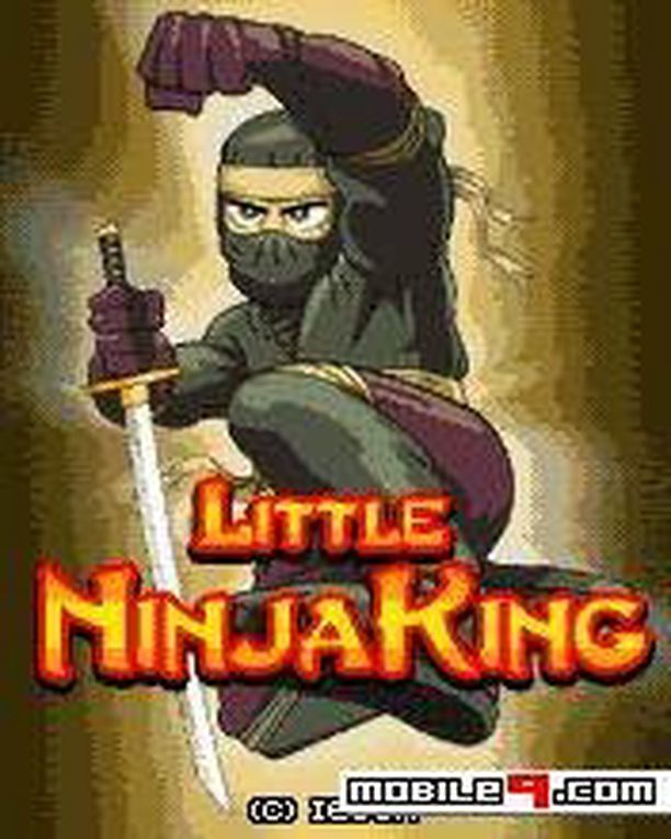 Little Ninja king