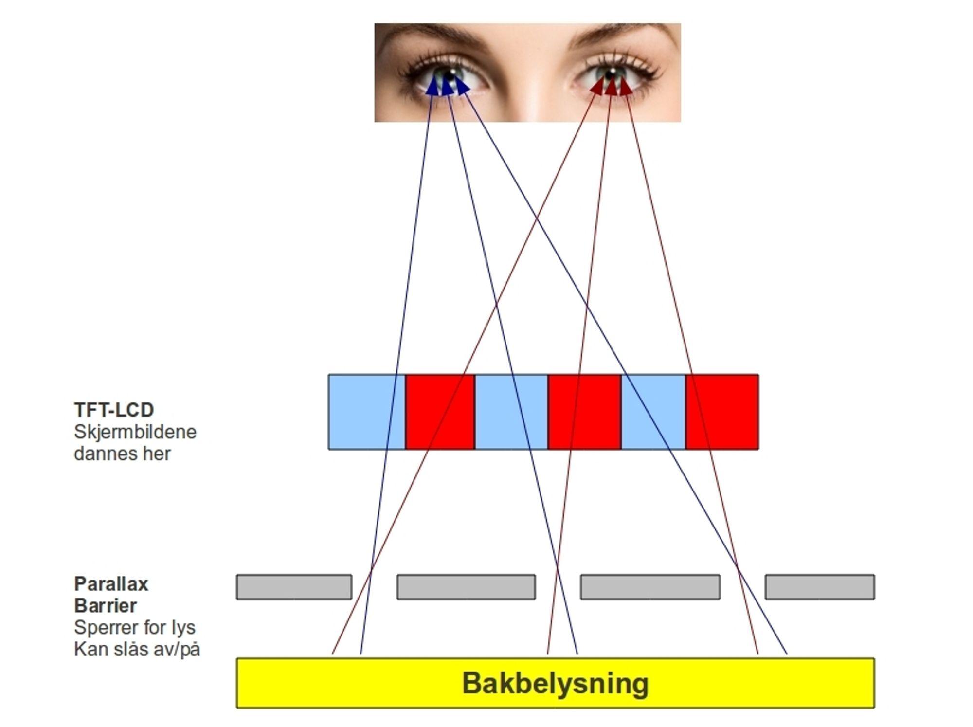 linsen i øyet
