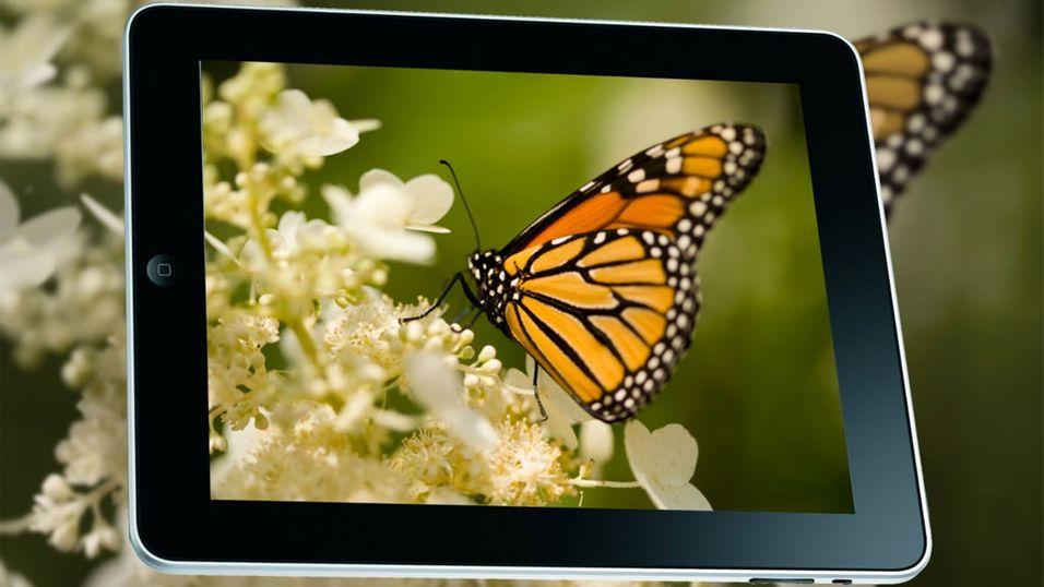 iPad 2-skjermen avslørt