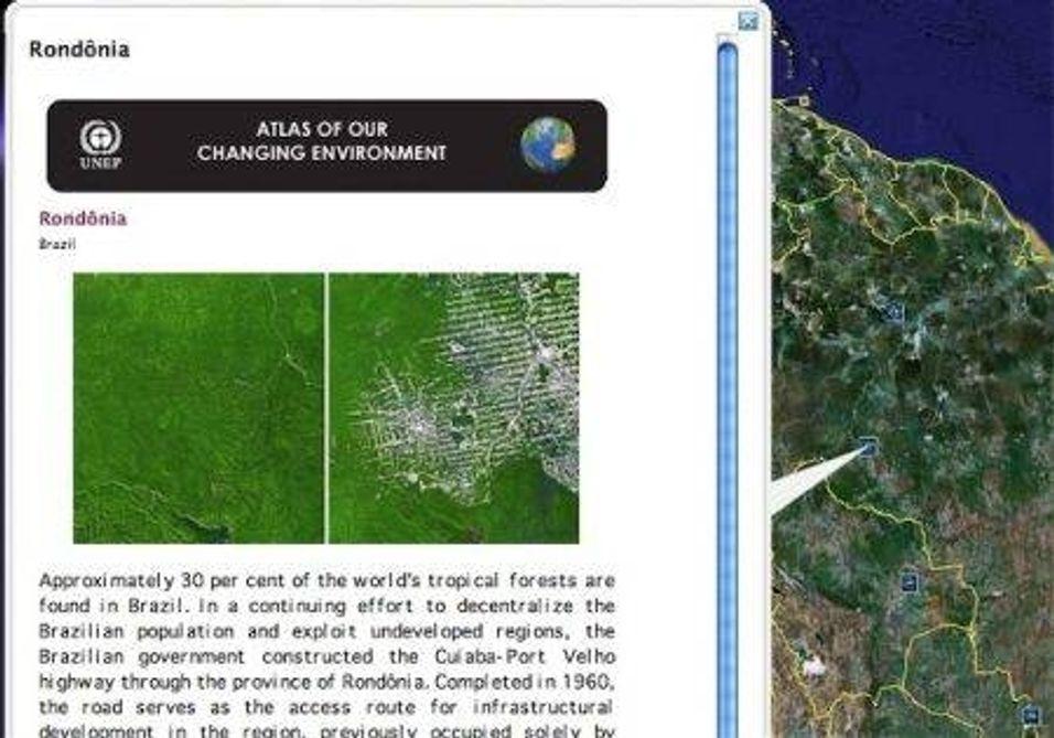 Google vil redde regnskogen