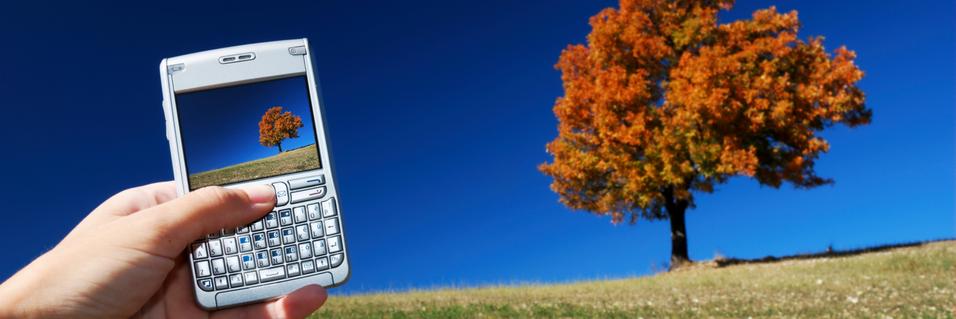 GUIDE: 8 tips for bedre mobilbilder