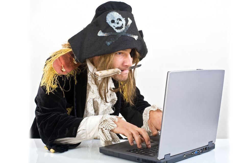 4800 nettsider forsvant etter cracking
