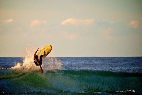 Foto: kiwi