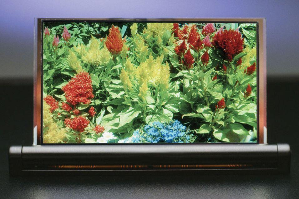 4,3 tommer stor prototype av et OLED-panel produsert med DuPonts printemetode.
