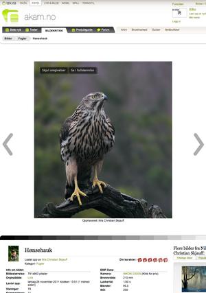 Det er lastet opp over hundre tusen foto i bildekritikk-forumet siden 2004.